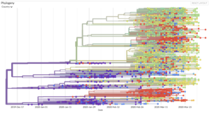 Genomic epidemiology of novel coronavirus